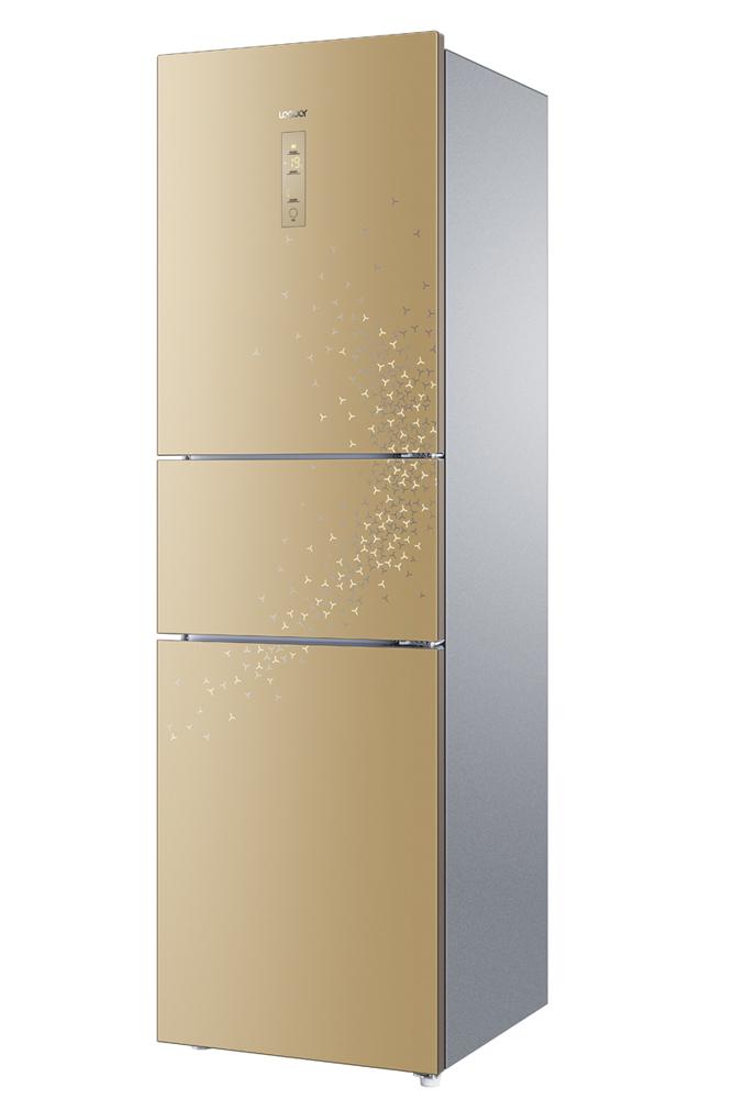 冰箱BCD-225WLDCN